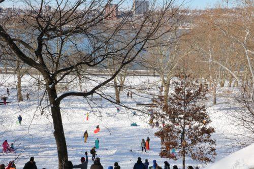 sledding NYC
