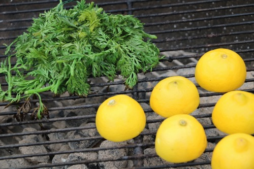 grilled lemons and carrot tops