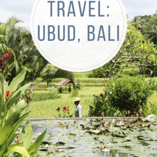 Top Ten Things To Do in Ubud, Bali For the Ultimate Wellness Retreat