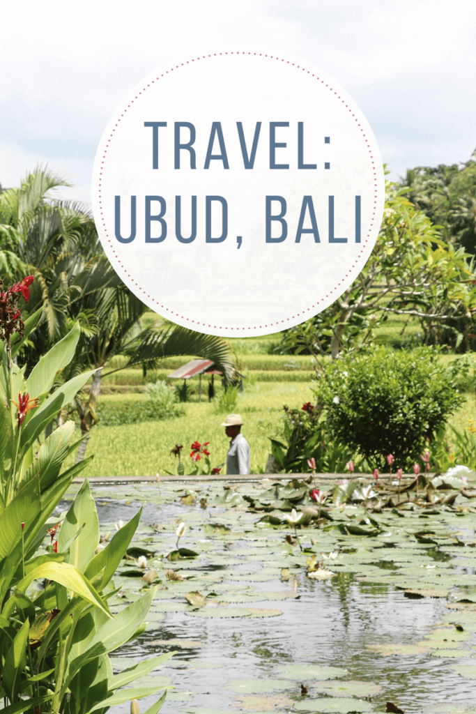 Top Ten Things to do in Ubud, Bali for the Ultimate Wellness Retreat. Travel, Yoga, Explore, Healthy Food, Spa, Wellness, Retreat.
