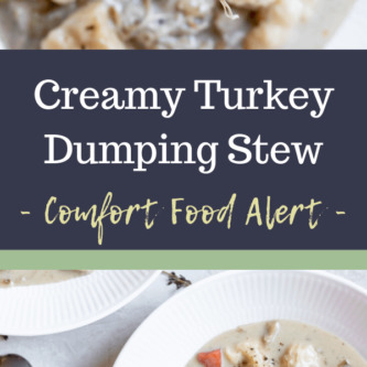 Creamy Turkey Dumpling Spoon