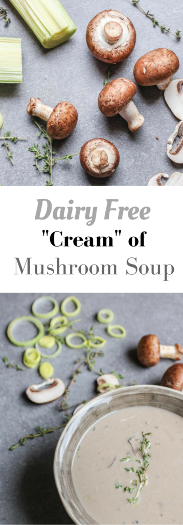 Dairy Free Cream of Mushroom Soup. A delicious blend of only 5 ingredients! Real food, vegan, vegetarian, gluten free. | Abraskitchen.com