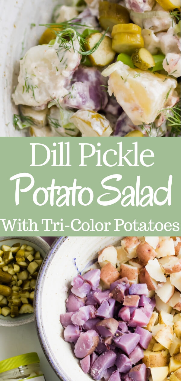 Crunchy dill pickles tossed together with creamy red, white, and blue potatoes, a huge handful of fresh dill and scallions. Dill pickle potato salad is quite literally THE BEST potato salad you will ever eat, for pickle lovers everywhere!