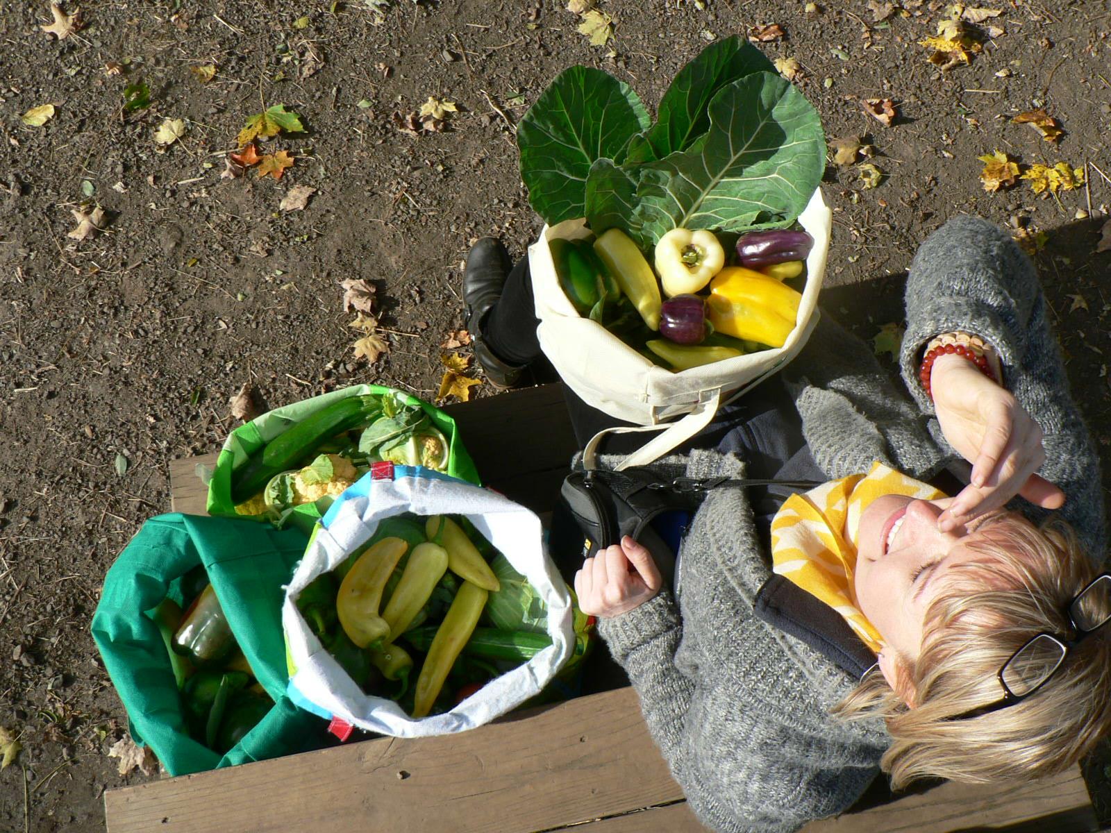 bags of veggies