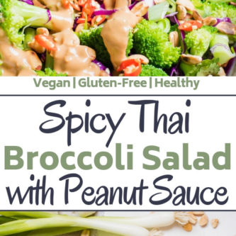 Spicy Thai Broccoli Salad with Peanut Sauce This super healthy and delicious Thai broccoli salad is loaded with colorful veggies and a mouthwatering spicy peanut butter dressing. #ad This healthy broccoli salad is gluten-free, paleo, vegan and makes the perfect side dish or main dish any night of the week! #HowDoYouPB #NationalPeanutBoard #HealthyRecipe #Vegan