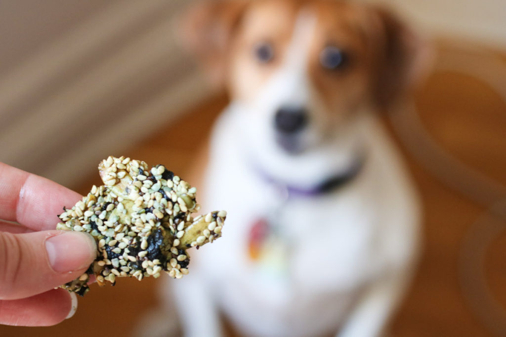 "A sweet, salty, crunchy, and super satisfying superfood snack. Sweet and salty sesame seaweed bars are the healthiest ""granola"" bar in town. Full of functional ingredients that will give you a burst of energy and leave you feeling satisfied for hours. Snacking upgraded."